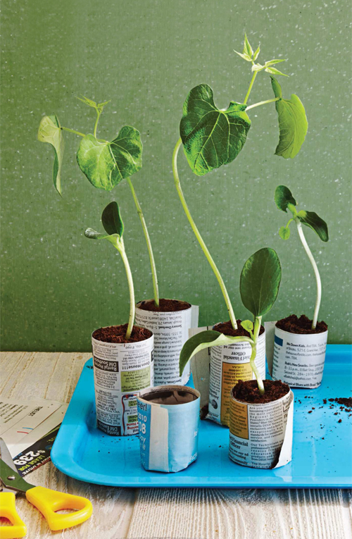 DIY Recycled Seed Pots from Newspapers and Magazines (via shelterness)