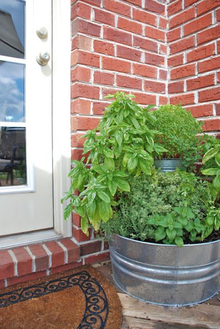 Back Door Herb Garden (via thevintagewren)