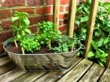 DIY Metal Balcony Herb Garden