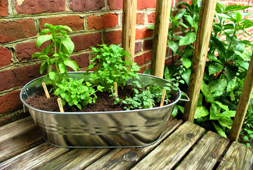 DIY Metal Balcony Herb Garden (via younghouselove)
