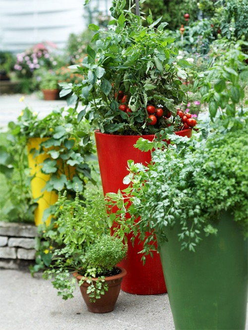 Herbs And Vegetables In Modern Planters Of Different Heights (via bhg)