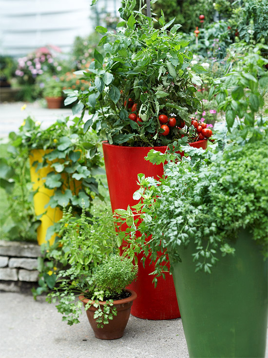 Herbs And Vegetables In Modern Planters Of Different Heights