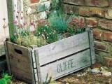 Herb Garden In A Crate