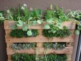 DIY Small Space Vertical Garden Of A Pallet
