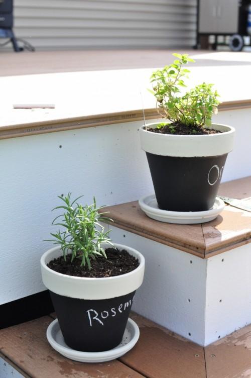 Herbs In DIY Chalkboard Pots