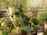 Herb Garden Display Stand