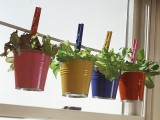 Herb Garden In Cute Buckets