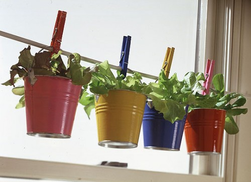 Herb Garden In Cute Buckets (via urbangardencasual)
