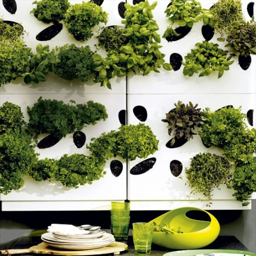 Ultra-Modern Urban Herb Garden (via housetohome)