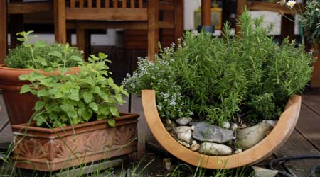 Container Herb Garden (via growing-herbs-at-home)