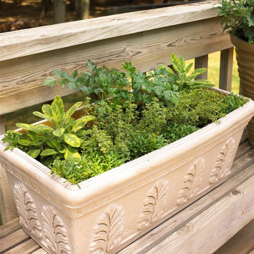 DIY Herbal Window Box (via bhg)