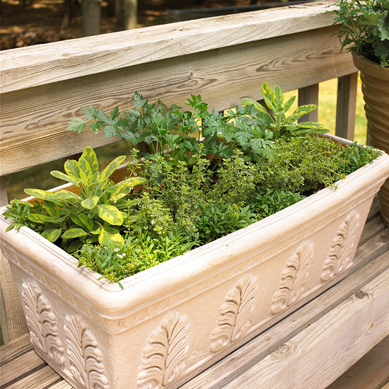 DIY Herbal Window Box