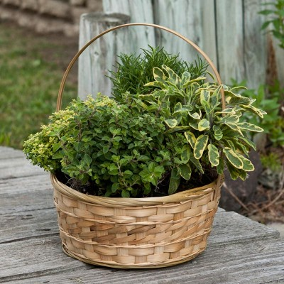 DIY Herb Garden In A Basket (via givingplants)