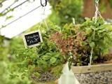 Hanging garden herb baskets