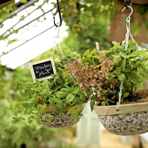 Hanging garden herb baskets (via housetohome)