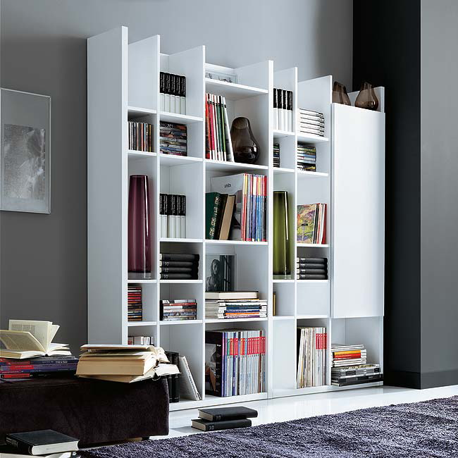 a minimalist library nook organized with a white bookcase with closed and open storage compartments in the living room