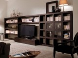 a large dark bookcase with a built-in TV unit is a cool idea for a contemporary space