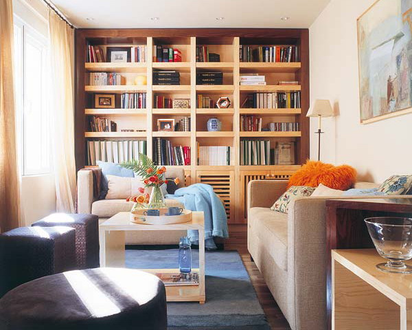 a large built in bookcase of light colored plywood is a cool idea that will turn your whole living room into a real library