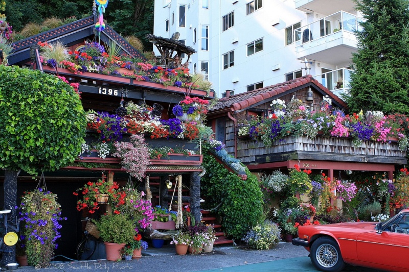 House Exterior Covered With Flowers