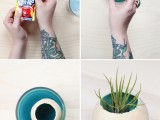 How To Dye An Air Plant Holder With Kool Aid