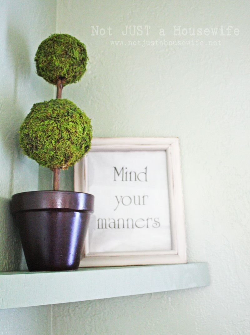How To Fresh Up Moss