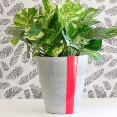 How To: 9 IKEA Pieces Turned Into Planters