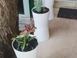 plain white IKEA planters to outdoor ones