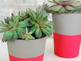 hot pink planters
