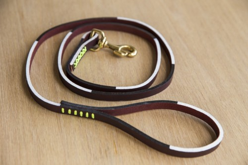 How To Make A Graphic Dog Leash