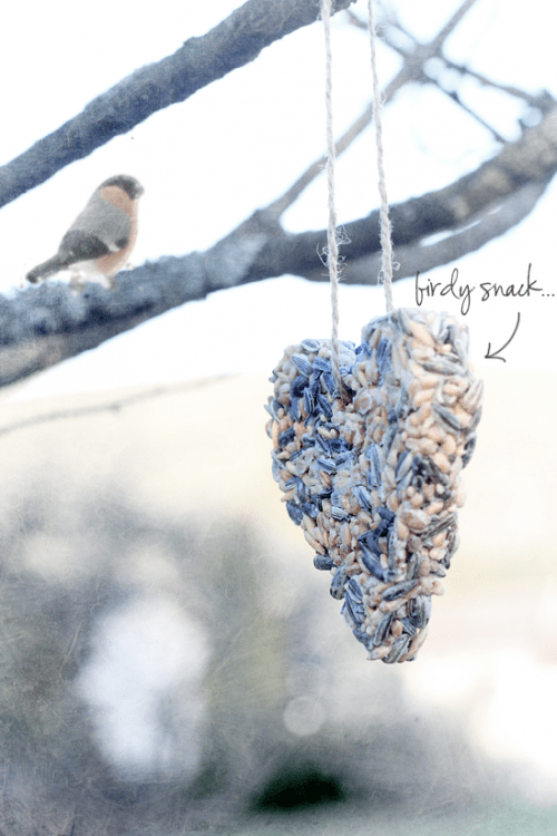How To Make Heart Treats For Birds