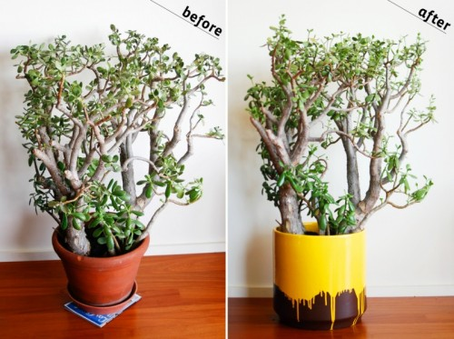 How To Paint Planter To Looks Cool