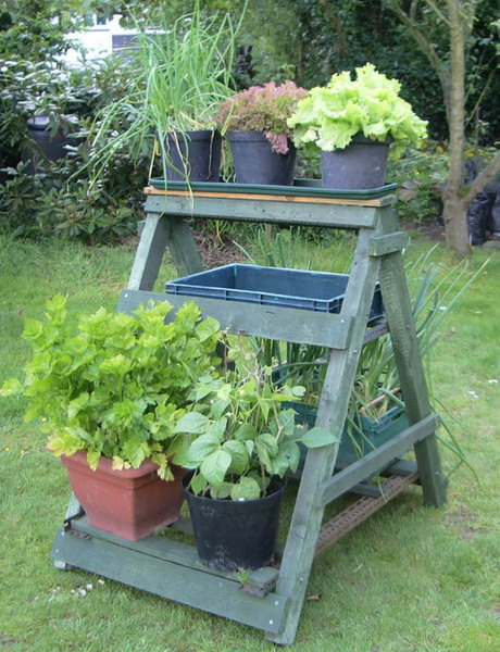 how to reuse a ladder as a plant stand - 15 ideas