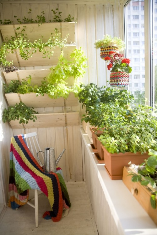 If your balcony is next to the kitchen then turning it in a herb garden is a way to go.