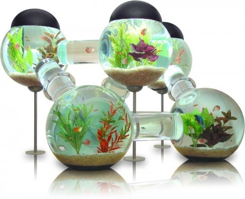 Innovative Labyrinth Aquarium That Looks Like Atomic Particle