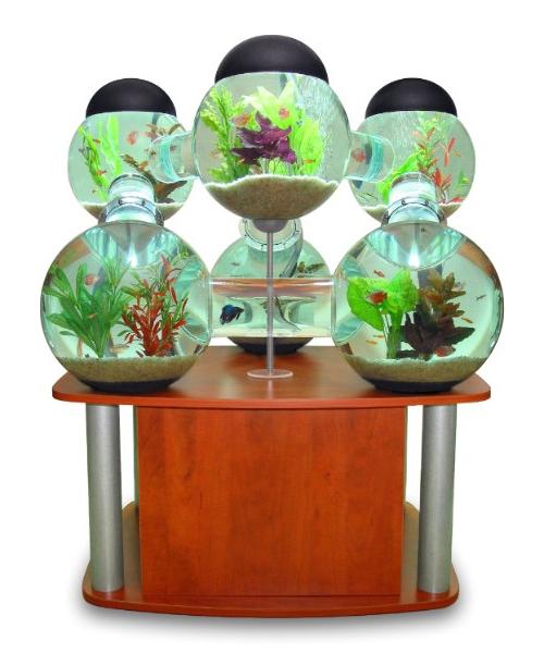 Innovative Aquarium