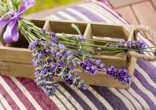 Lavender Decorations