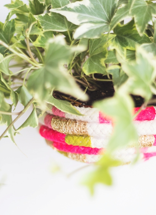 Lovely Diy Color Blocked Rope Planter