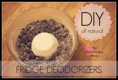 all-natural fridge freshners (via theherbalhealingmama)