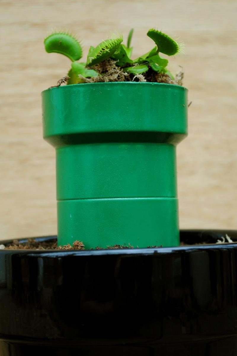 Mario Inspired Planter
