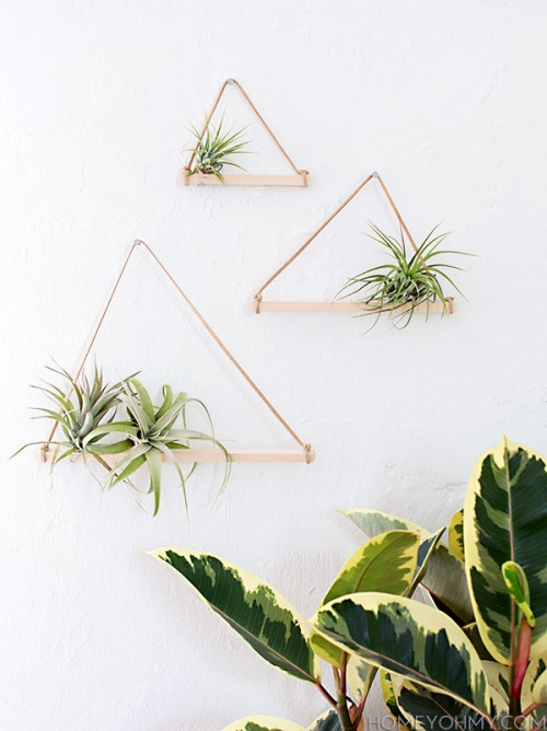 Minimalist And Easy DIY Air Plant Hangers