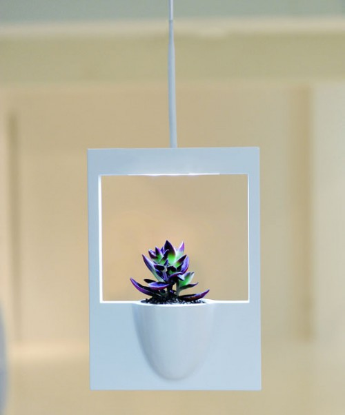 Modern Plaroid Flower Vase