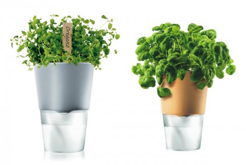 Modern and Stylish Self-Watering Flowerpots