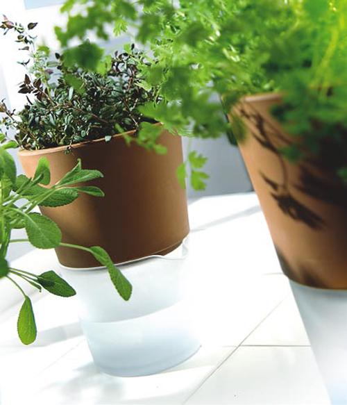 Modern Self Watering Flowerpots