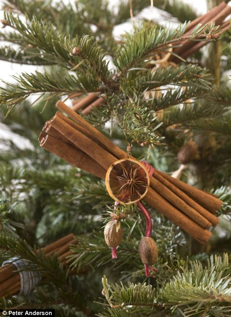 12 Cool Natural DIY Christmas Ornaments