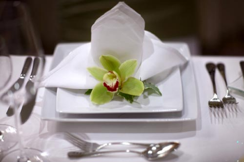 Orchids For Table Serving