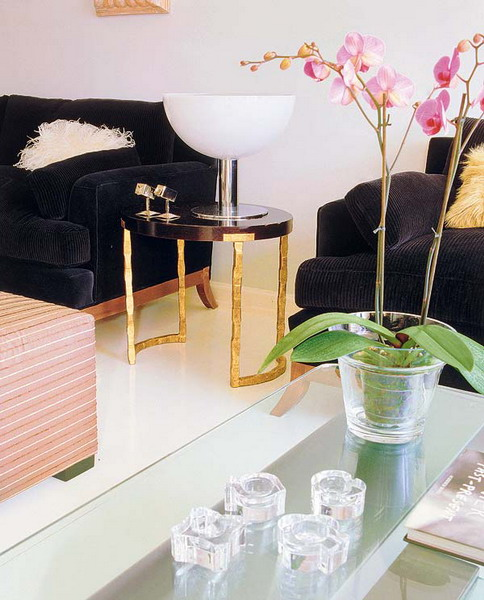 Orchids In Interior Decorating