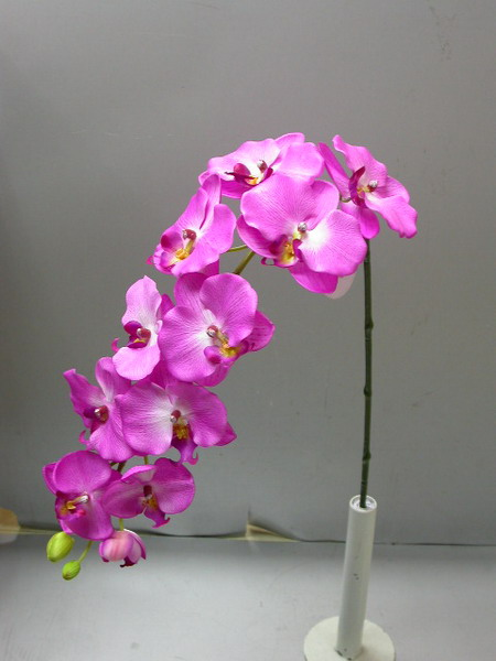 Orchids In Interior Decorating | Shelterness