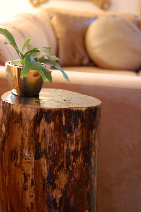 Original Decor Of Tree Stumps