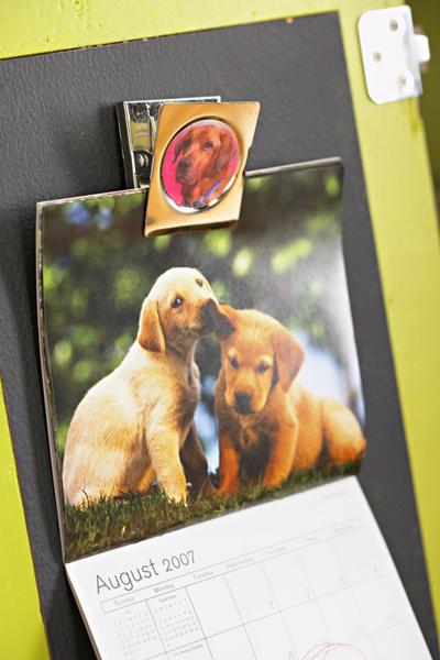 Personal Pet Storage