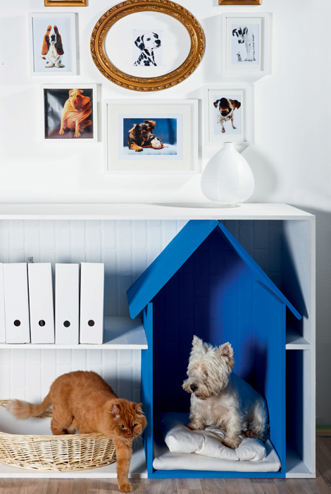 Pet living ideas 02